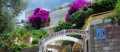Villa Sun Rose
