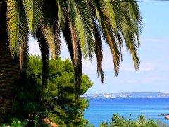 Dalmacja Region Zadar - wyspa Ugljan